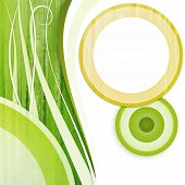 Circle White Green Yellow