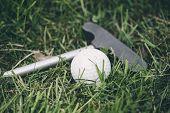 Mini Golf Equipment On The Green Grass . poster