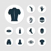 Physique Icons Set With Ear, Lip, Foot And Other Body Elements. Isolated  Illustration Physique Icon poster