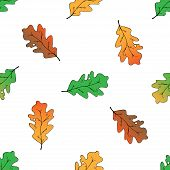 Seamless Pattern Of Oak Leaves. Vector Illustration Of A Seamless Background Of Autumn Oak Leaves. A poster