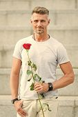 Handsome Guy With Rose Flower Romantic Date. Valentines Day And Anniversary. Flowers Delivery. Datin poster