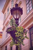 Ornate Street Lantern With Beautiful Hanging Flower Pot In Front Of An Old Building. Hanging Potted  poster