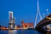 Night Erasmus Bridge In Rotterdam