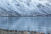 Beautiful View Over Fjord In Tromso, Norway. Winter. Polar Night. Long Shutter Speed poster