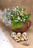 picture of eat me  - on a sacking nest, quail eggs and forget-me-not flowers