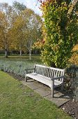 Garden Bench In Cambridge Botanic Garden