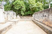 pic of watamu  - Gede ruins in Kenya are the remains of a Swahili town typical of most towns along the East African Coast - JPG