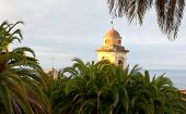 La torre del campanario detrás de las palmeras
