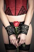 sexy woman holding a red rose