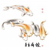 Vector Chinese Carp Ink Painting, Translation of Calligraphy: Abundant Harvest Year After Year. Tran