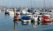 stock photo of marina  - Motor boats in a marina with masts and calm blue sea - JPG