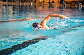 stock photo of crawling  - Man swims forward crawl style in public swimming pool