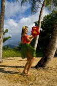 stock photo of hula dancer  - Hawaiian teenage girl dancing Hula on the beach in Kauai