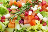 closeup of a plate with refreshing salad, made with lettuce mix, tomato, cheese and pomegranate