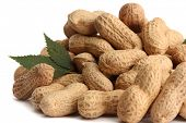 stock photo of groundnut  - tasty peanuts with leaves - JPG