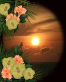 Tropical Flowers Border Sunset