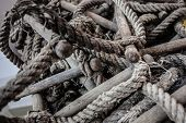 Tangled Rope Ladder