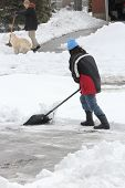 image of snow shovel  - Lady shoveling the deep snow off her driveway after a snow storm - JPG