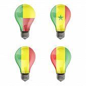 Realistic Bulb Of Guinea, Benin, Mali, Senegal