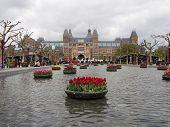 Tulips And Rijksmuseum