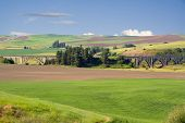 Bridge On The Palouse