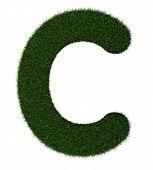 Grass alphabet-C