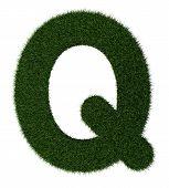 Grass alphabet-Q