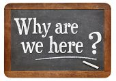Why are we here question  on a vintage blackboard isolated on white