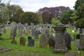 stock photo of headstones  - Headstones in quiet graveyard with trees surrounding - JPG