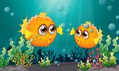 stock photo of aquatic animal  - Illustration of the two puffer fishes under the sea - JPG