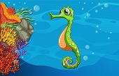 stock photo of seahorse  - Illustration of seahorse swimming underwater - JPG