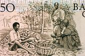 GHANA - CIRCA 1980: Men Splitting Cacao Pots on 50 Cedis 1980 Banknote from Ghana.