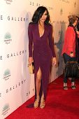LOS ANGELES - OCT 23:  Naya Rivera at the De Re Gallery & Casamigos Host The Opening Brian Bowen Smith's