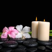 Spa Concept Of White, Pink Hibiscus Flowers, Candles And Natural Bamboo On Zen Basalt Stones With Dr