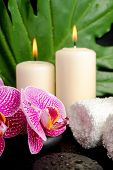 Spa Health Care Of Zen Stones With Drops, Twig Stripped Violet Orchid (phalaenopsis), Candles, Big G