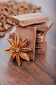 The milk chocolate, coffee beans and anise