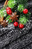 Christmas warm knitted background with fir tree and spices anise, cinnamon
