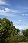 Phi Phi Island Landscape