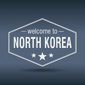Welcome To North Korea Hexagonal White Vintage Label