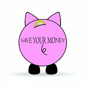 Piggy Bank Save Your Money Illustration