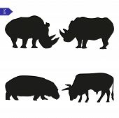 Set Of Vector Silhouettes Of Large Mammals