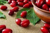 fresh cornel berries in brown bowl