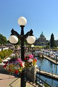 VICTORIA WATERFRONT, CANADA- JULY 15: View of  flowers on July 15, 2014 at Victoria Waterfront