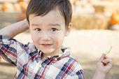 Cute Mixed Race Young Boy Having Fun at the Pumpkin Patch.