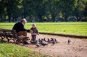 VILNIUS, LITHUANIA - SEPTEMBER 24: Grandfather and granddaughter age 4 years feeding pigeons in the park on September 24, 2014 in Vilnius, Lithuania.