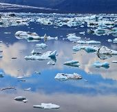 Transparent icebergs and ice floes in the Ice Lagoon Jokulsarlon. South-east Iceland in July