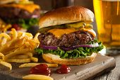 image of hamburger-steak  - Grass Fed Bison Hamburger with Lettuce and Cheese - JPG