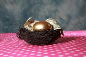 picture of egg-laying  - Nest Egg. A Solid 24K Golden Egg lays in a Black Bird Nest with a Genuine 100 Dollar bill. Represents Retirement savings, Saving for a Rainy Day, Savings account, 401K, Banking, Finance business - JPG