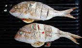 pic of red snapper  - Two Snapper fish grilled on fire with lemon and herbs - JPG