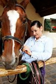 pic of harness  - Young woman fixing harness on horse - JPG